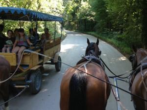 Fahrt mit der Kutsche zum Schloss Herrenchiemsee