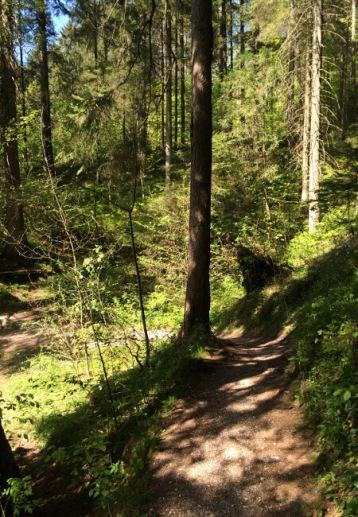Wanderweg um den Ruhpoldinger Taubensee