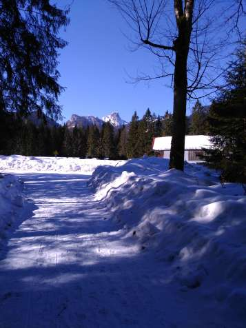 Spaziergang im Schnee in Ruhpolding